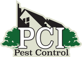 Plano Rodent Removal