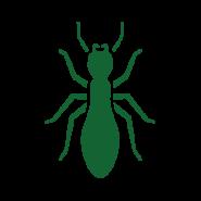 green termite icon